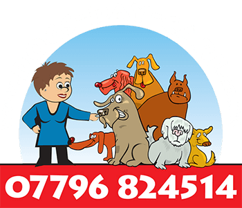 Dogs Day Care logo with happy cartoon dogs